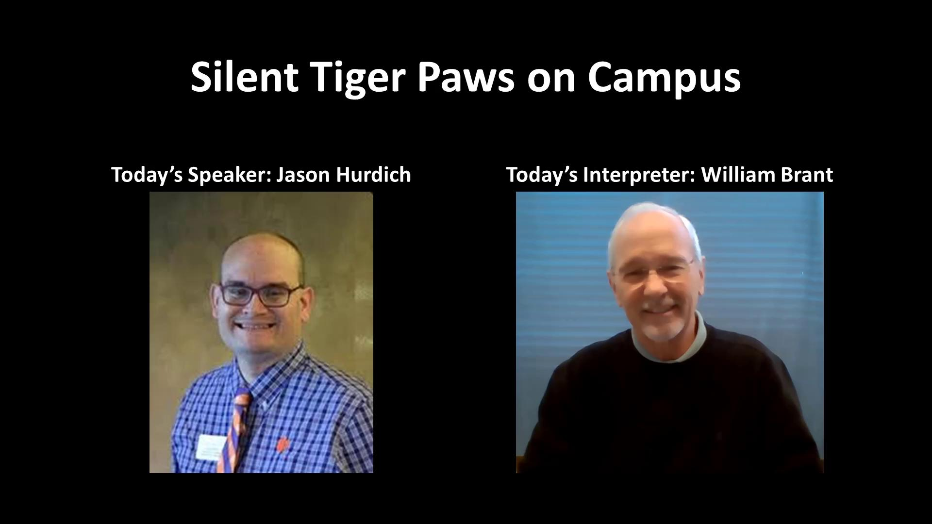 Silent Tiger Paws on Campus